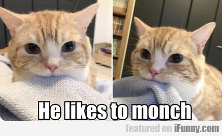 He likes to monch