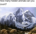 How Many Hidden Animals Can You Count...