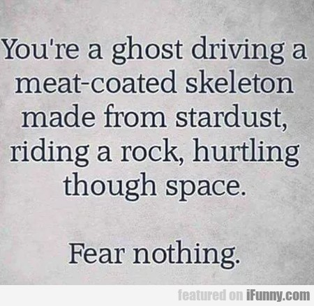 You're a ghost driving a meat-coated skeleton...