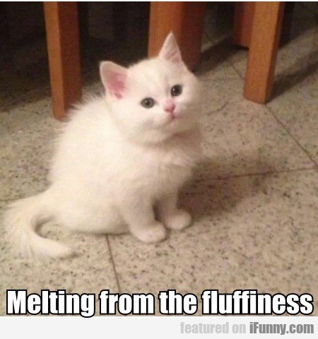Melting from the fluffiness
