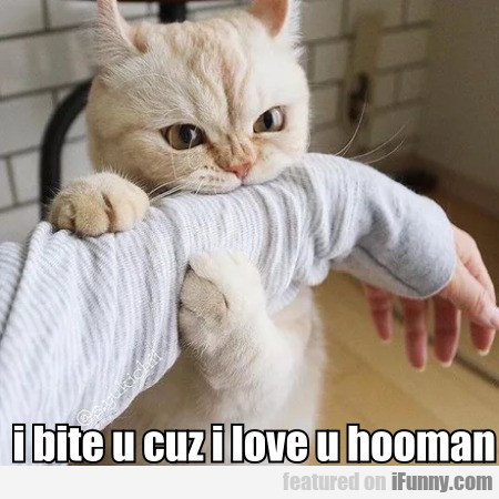 I Bite U Cuz I Love U Hooman