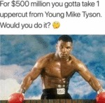 For $500 Million You Gotta Take 1 Uppercut From..