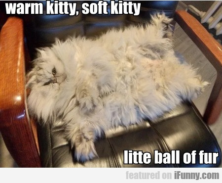 Warm Kitty, Soft Kitty, Little Ball Of Fur