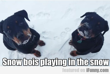 Snow Bois Playing In The Snow