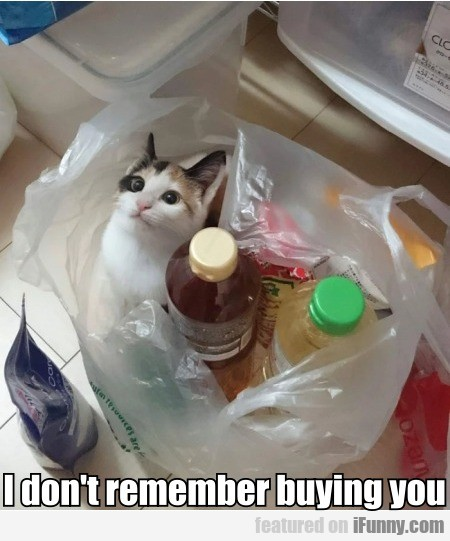 I Don't Remember Buying You
