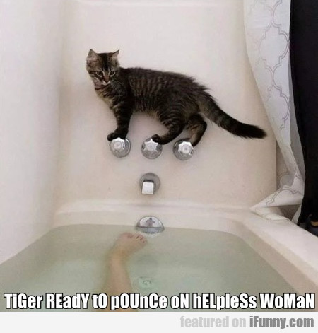 TiGer REadY tO pOUnCe oN hELpleSs WoMaN