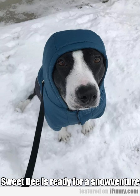 Sweet Dee Is Ready For A Snowventure