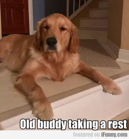 Old Buddy Taking A Rest...