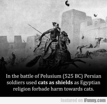 In The Battle Of Pelusium 525 Bc Persian Soldiers