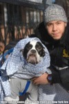 Hero Canine Saves Owner's Life From East New...