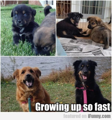 Growing Up So Fast