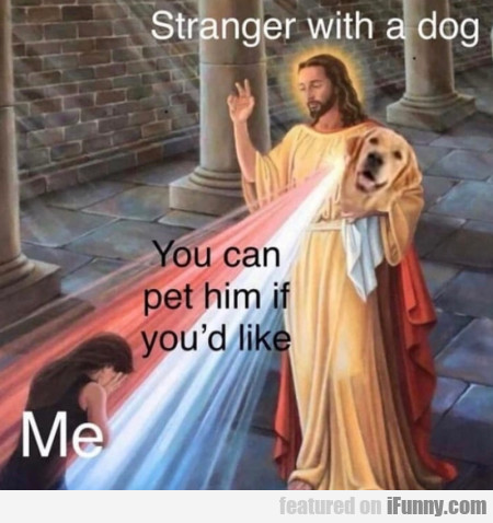 stranger with a dog - You can pet him...