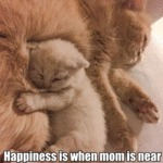 Happiness Is When Mom Is Near