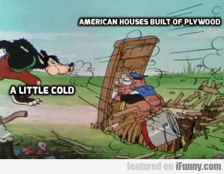 A Little Cold - American Houses Built Of Plywood