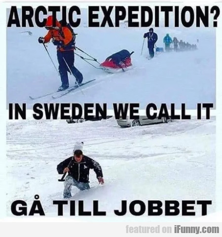 Arctic Expedition - In Sweden We Call It...