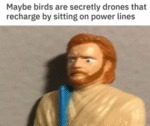 Maybe Birds Are Secretly Drones That Recharge...