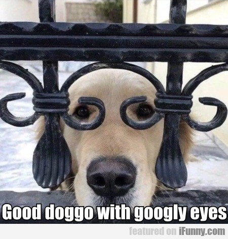 Good Doggo With Googly Eyes