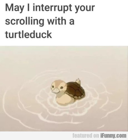 May I Interrupt Your Scrolling With A...