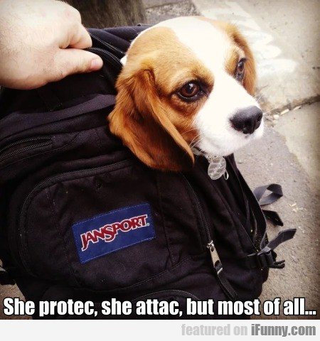 She Protec, She Attac, But Most Of All