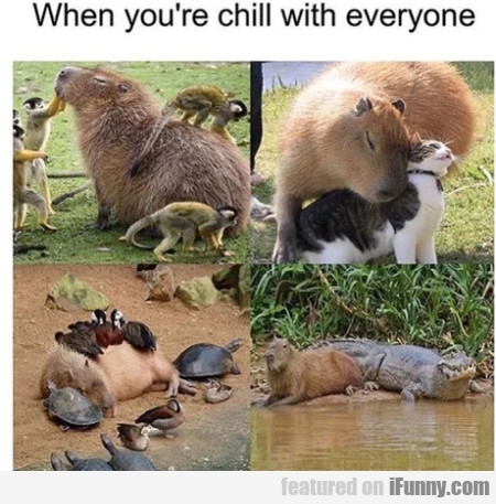 When You're Chill With Everyone