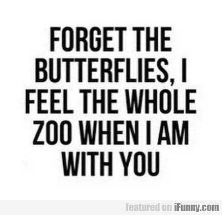 Forget The Butterflies, I Feel The Whole Zoo...