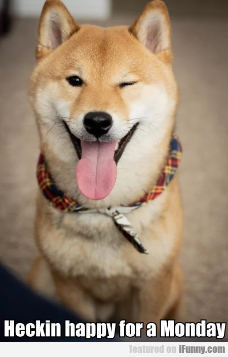 Heckin Happy For A Monday