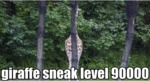 Giraffe Sneak Level 90000
