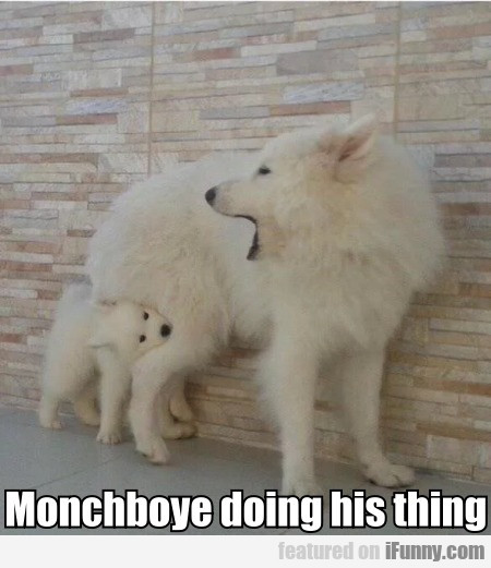 Monchboye Doing His Thing