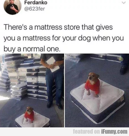There's A Mattress Store That Gives You A Mattress