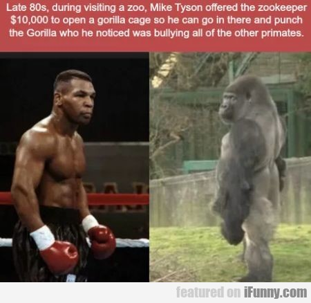 Late 80s during visiting a zoo, Mike Tyson...