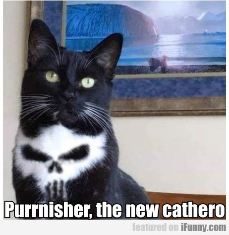 Purrnisher, the new cathero