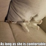 As Long As She Is Comfortable