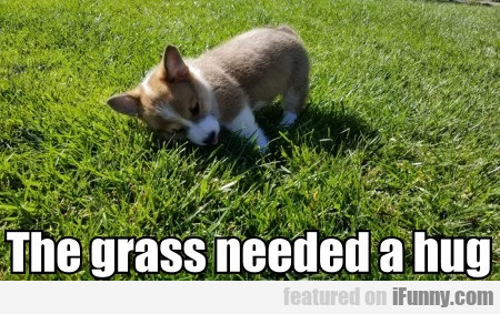 The Grass Needed A Hug