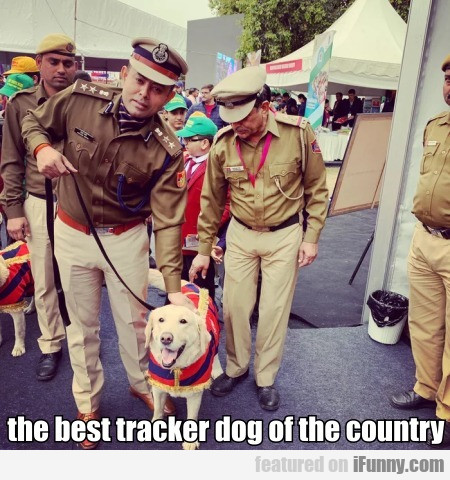 the best tracker dog of the country