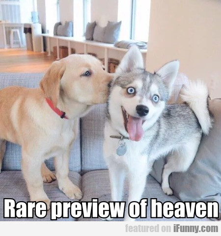 Rare Preview Of Heaven