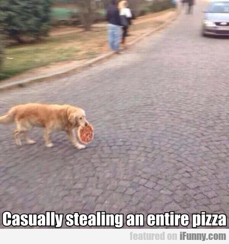 Casually Stealing An Entire Pizza