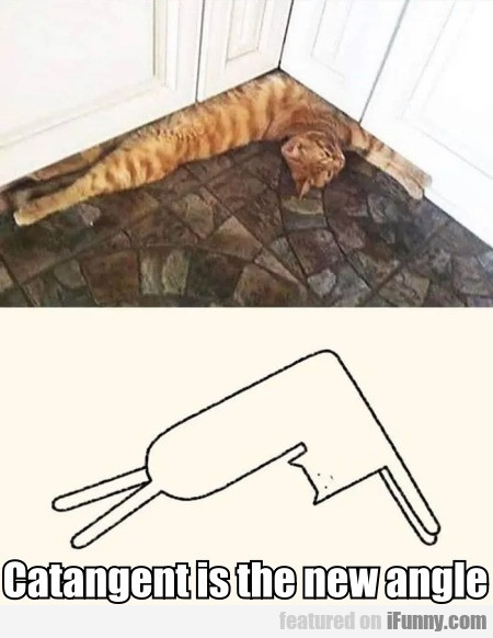 Catangent Is The New Angle