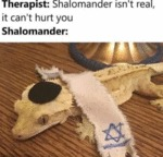 Therapist - Shalomander Isn't Real, It Can't...