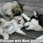 Playtime With Mom And Dad