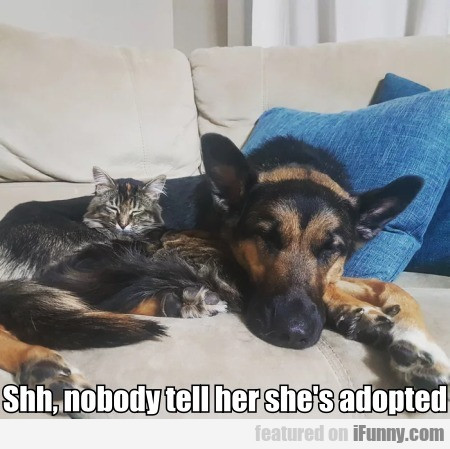 Shh, Nobody Tell Her She's Adopted