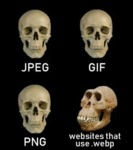 Jpg - Gif - Png - Websites That Use .webp...