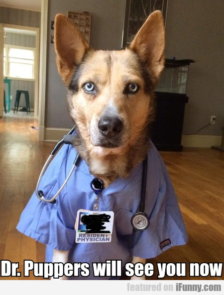 Dr. Puppers will see you now