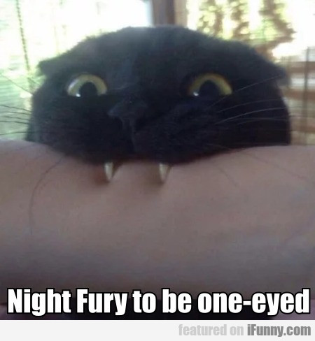 Night Fury to be one-eyed
