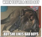 When You're A Good Boy But She Likes Bad Boys...