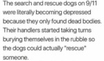 The Search And Rescue Dogs On 9.11 Were...