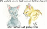 Ineffective Cat Pickup Lines