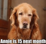 Annie Is 15 Next Month