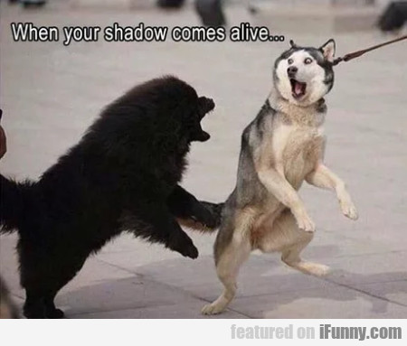 When your shadow comes alive