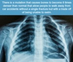 There Is A Mutation That Causes Bones To...