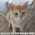 Species Flerken Danger High